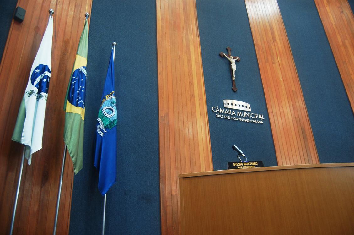 Plenario Câmara SJP